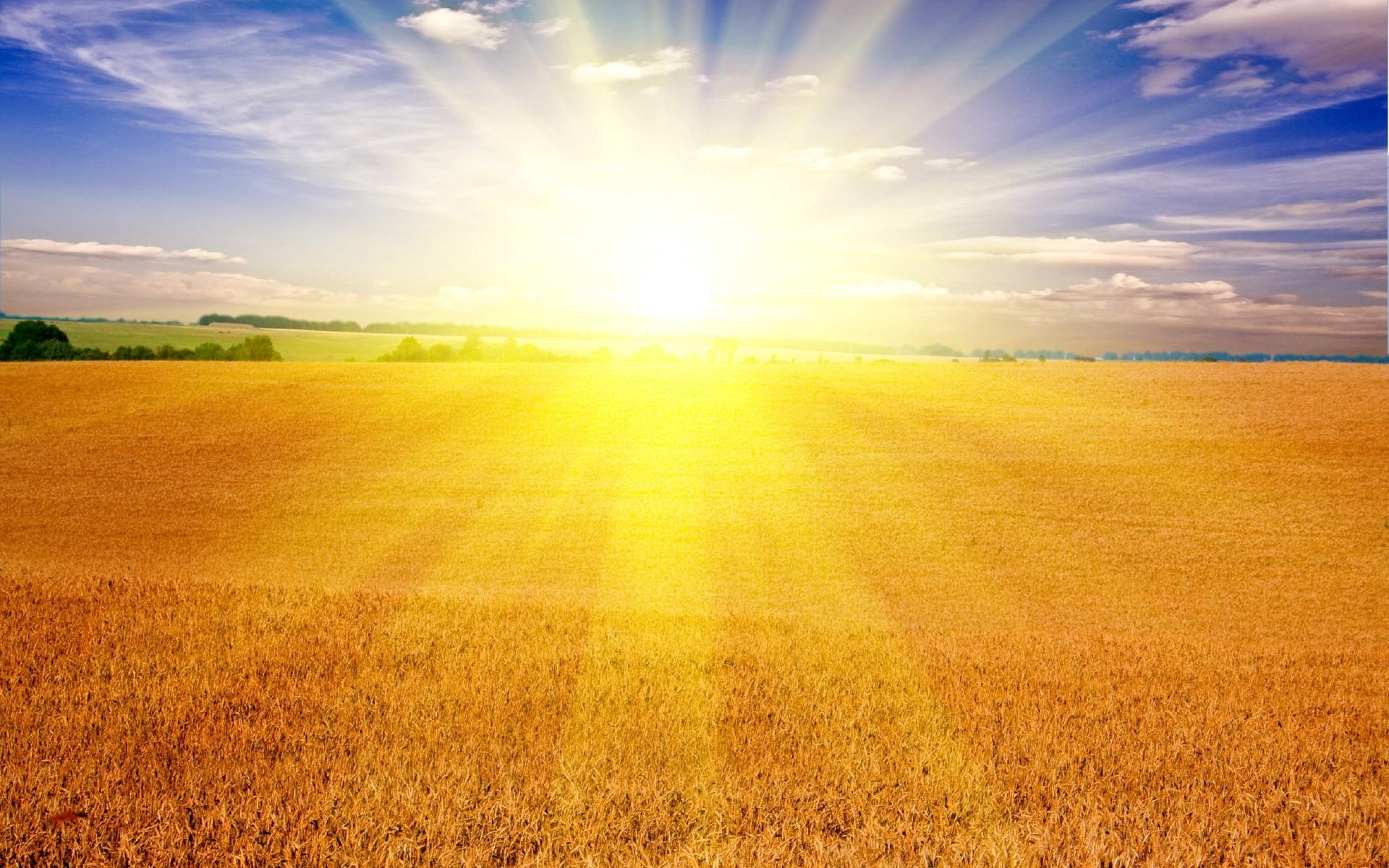 Днем, картинка рассвет для детей