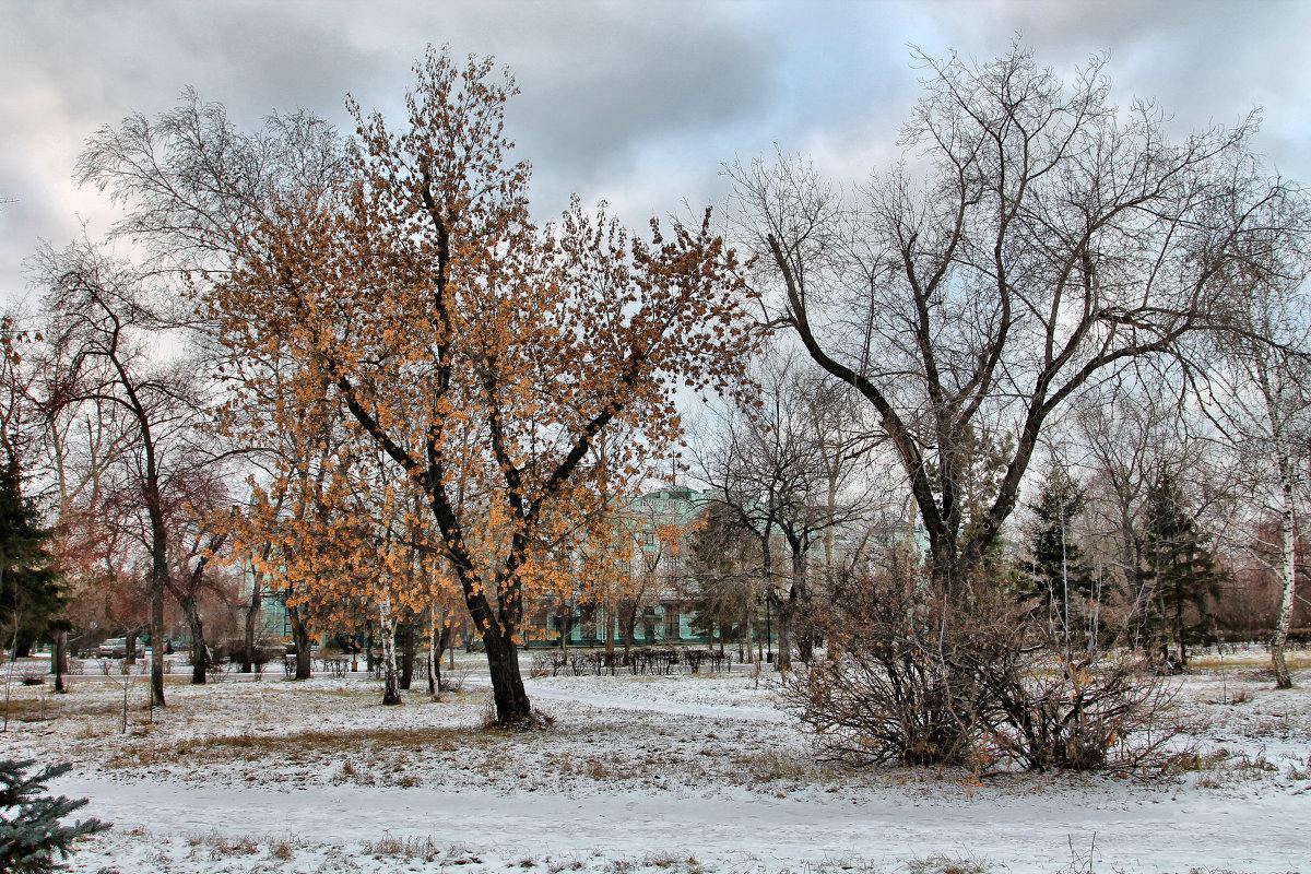 Картинка погода в ноябре