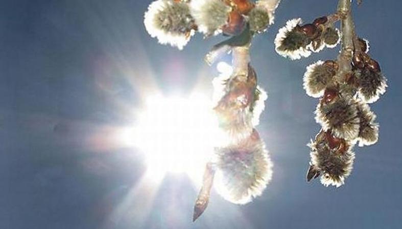 Погода в хилке забайкальского края на 10 дней