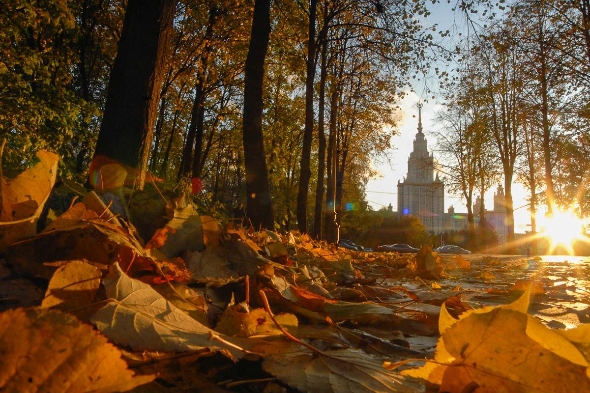 осень в москве картинки цены