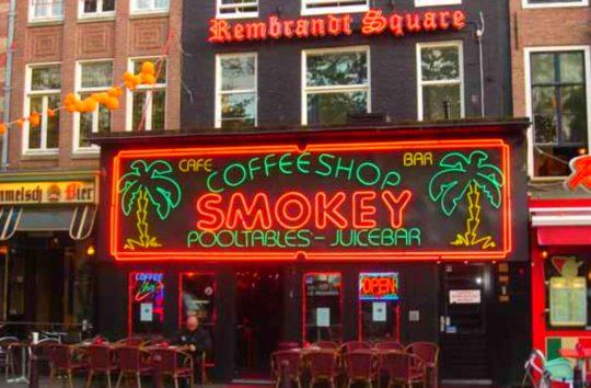 Магазины марихуаны в голландии сколько можно грамм марихуана украина