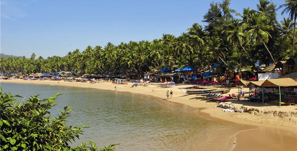 В Гоа собираются ввести штраф за публичное распитие алкоголя