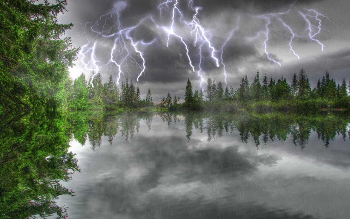 Картинка гроза в лесу