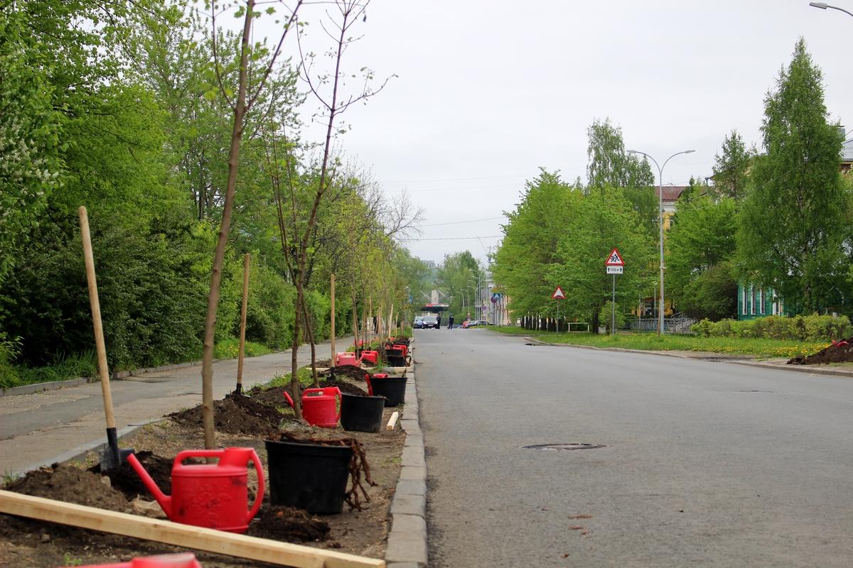 Первомайская центральная районная больница республика крым