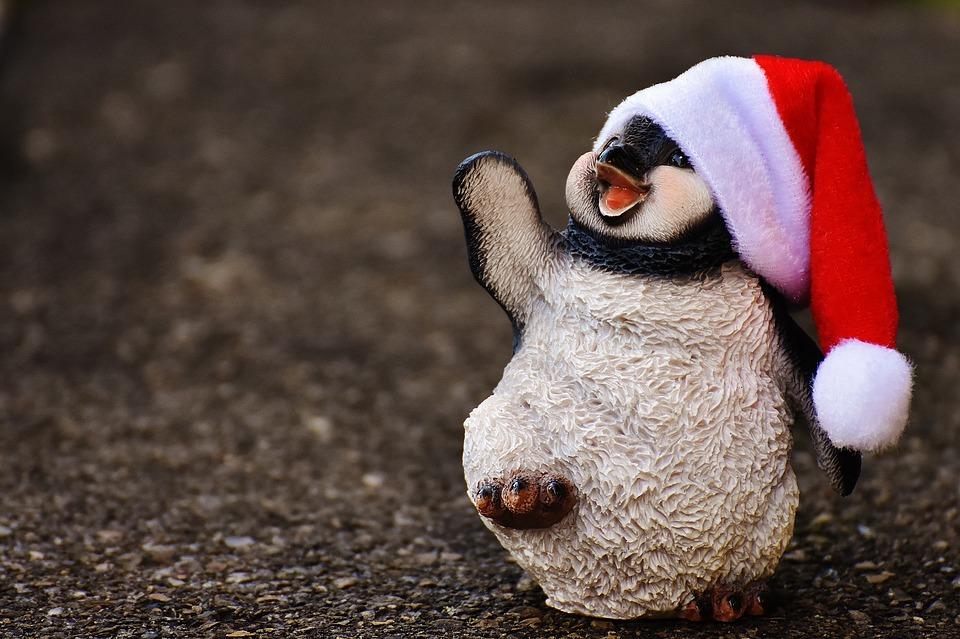 легко доброе утро картинки пингвины обнаружили