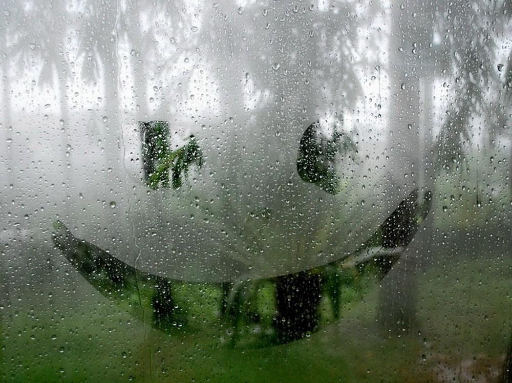 после дождя прикольные картинки бабенка лишь