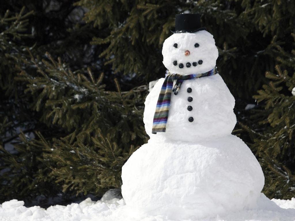 скачать торрент снеговик