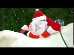 Клип 2014 (Jingle Bells)