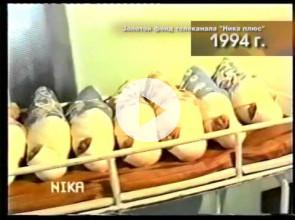 Ника плюс 25 лет в эфире 10.02.2016