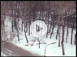 Мой старый город. Левашовский бульвар. 2.03.12