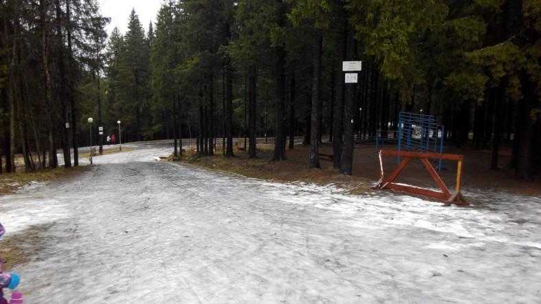 """Трассу """"Фонтаны"""" петрозаводчанам пришлось открывать без лыж (фото)  Трассу """"Фонтаны"""" петрозаводчанам пришлось открывать без лыж (фото)"""