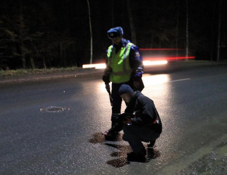 ОНФ: Освещение на дорогах Петрозаводска в 2 раза ниже норм  ОНФ: Освещение на дорогах Петрозаводска в 2 раза ниже норм