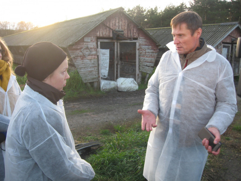 Граждане Карелии готовы купить животных зверофермы, где погибли неменее тысячи норок