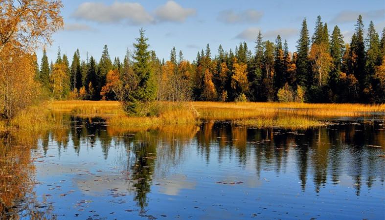 В Псковская область стала одной из лучших для экскурсионного отдыха