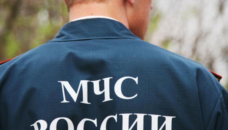 Необычную операцию пришлось провести петрозаводским спасателям
