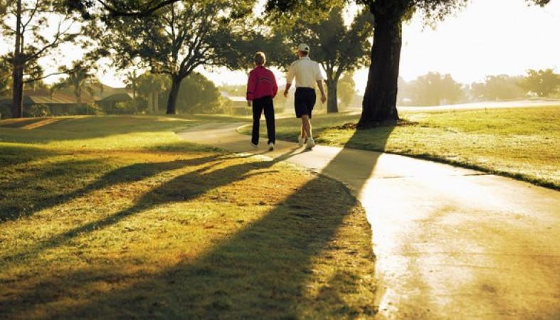 Прогулки насвежем воздухе продлевают жизнь