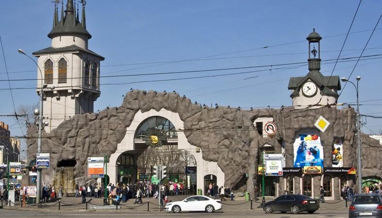 Мальчик из Петрозаводска выручил журналистку в московском Зоопарке