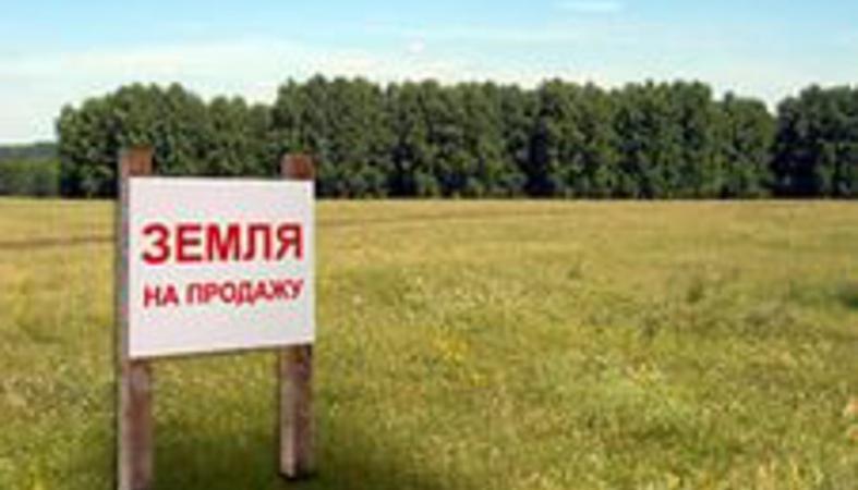 Власти Карелии предлагают взять на себя распоряжение земельными ресурсами муниципалитетов