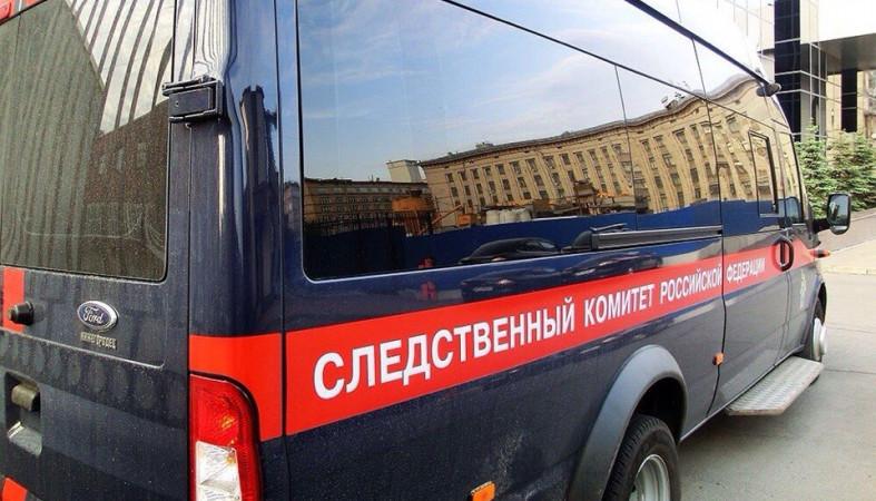 Ребенка убило качелями надетской площадке вПсковской области