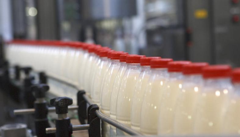 """Крупнейших карельских производителей """"молочки"""" обвинили в сговоре"""