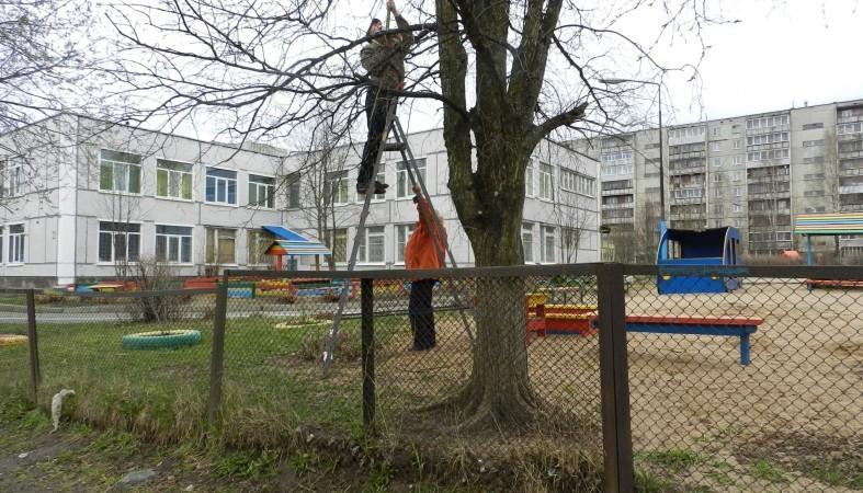 ВПетрозаводске арестовали угрожавшего подорвать детский парк коллектора