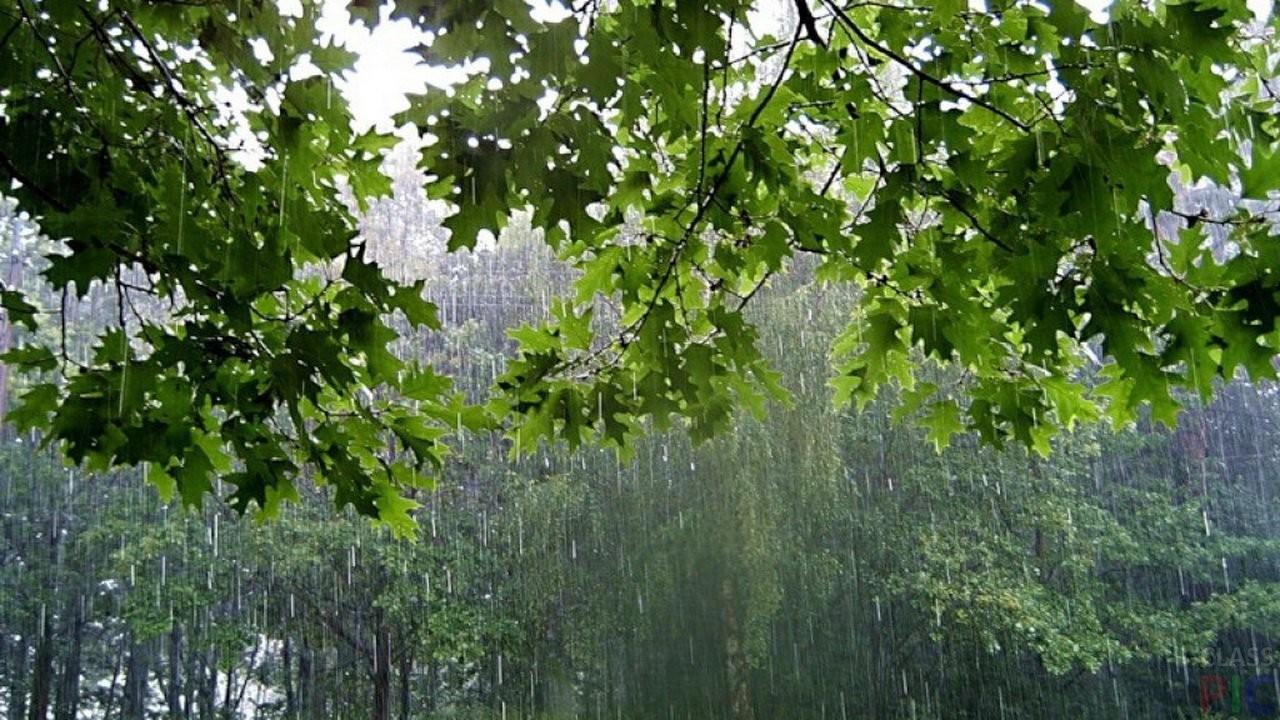Синоптики: Вближайшие 10 лет лето может быть холодным