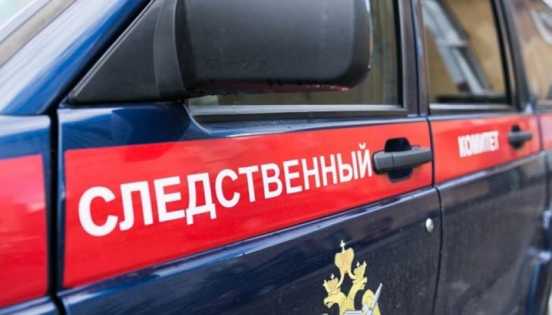 ВПетрозаводске задержали женщину, бросившую новорожденного ребенка