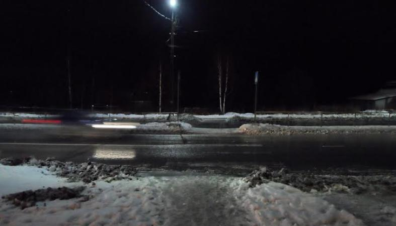 ГИБДД Петрозаводска ищет свидетелей наезда на пешехода: фото