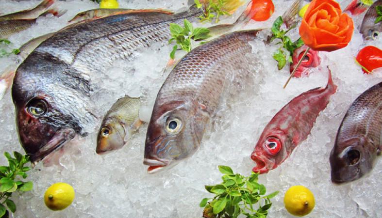 ФСБ предупредила рыбодобытчиков онедопустимости применения иностранных судов
