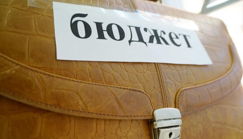Впервом чтении Госсовет Удмуртии принял бюджет на следующий 2017