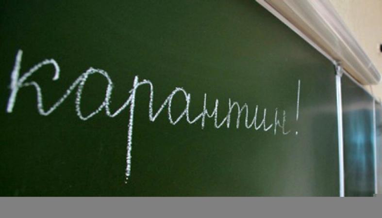 В Карелии начали закрываться классы в связи с ОРВИ