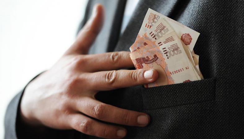 Житель Карелии неудачно пытался откупиться от полицейских