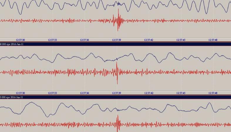 Мощное землетрясение случилось наКамчатке
