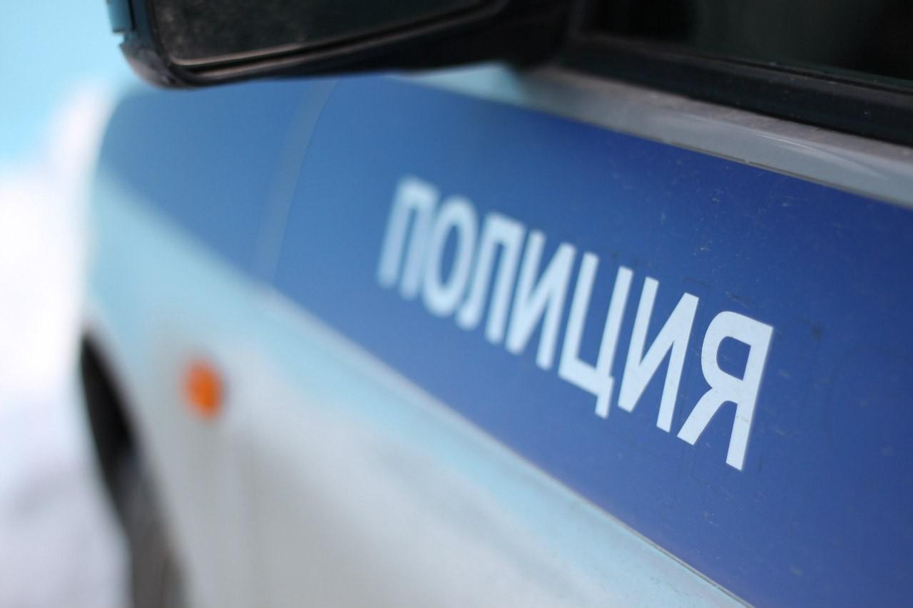 Полицейские задержали директора учреждения поподозрению вкраже неменее одного млн. руб.