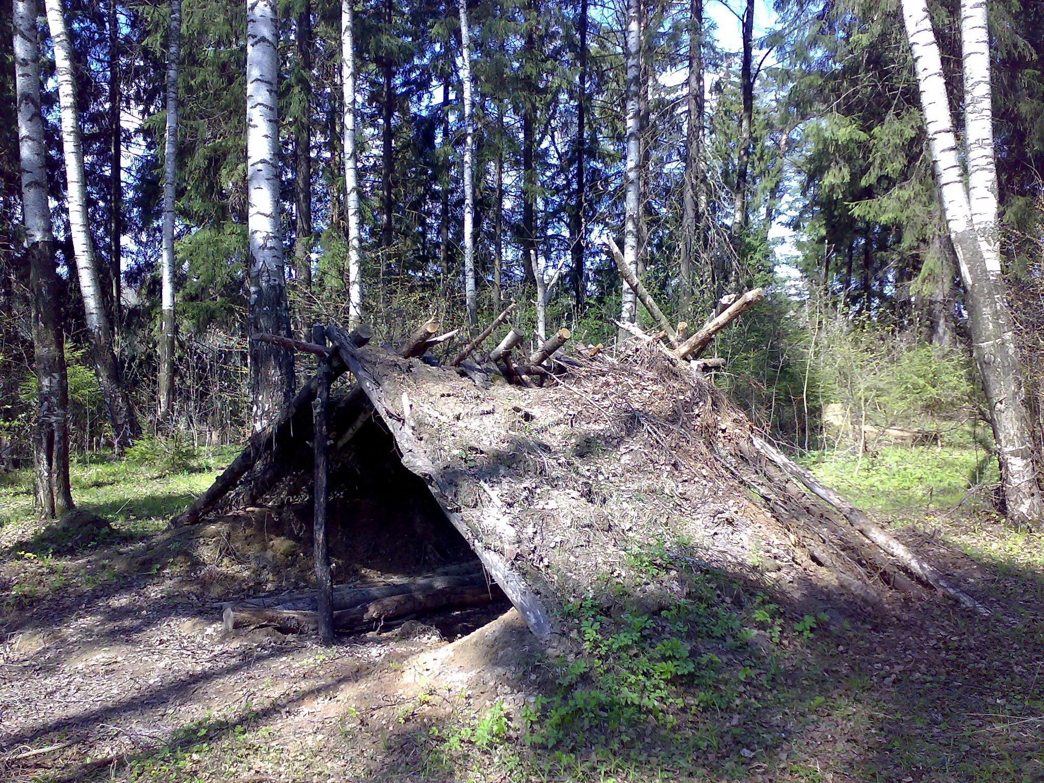 Самодельный шалаш в лесу своими руками 54