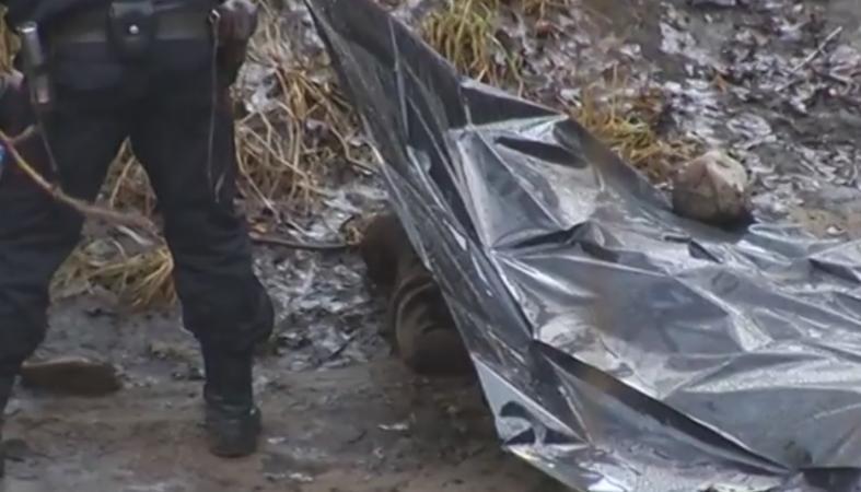 Труп пожилого мужчины выловили из реки в самом центре Петрозаводска (видео)