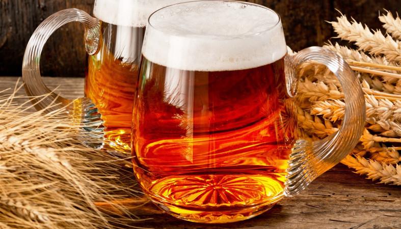Глобальное потепление приведет к недостатку пива напланете— исследование