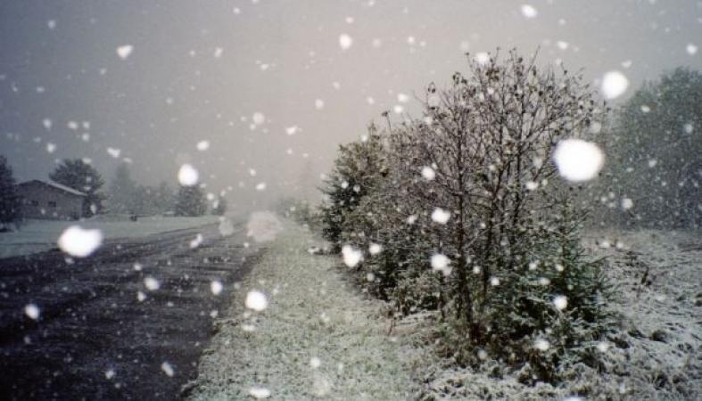 Погода в перми на июнь 2016 года от гисметео