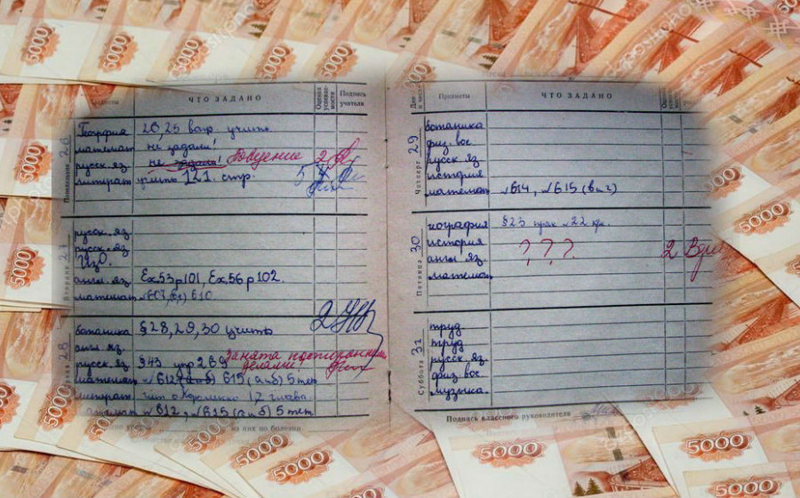 барс образование электронный дневник через госуслуги